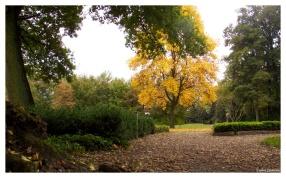 Park Scholtenhagen