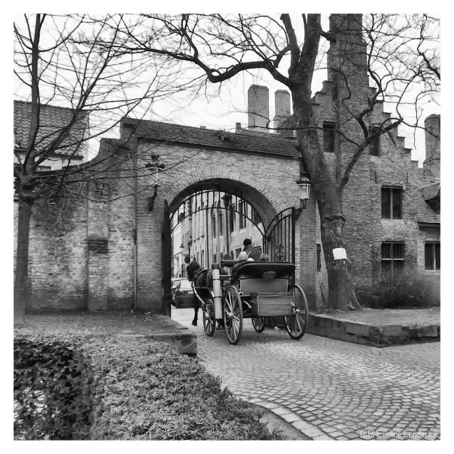 Brugge koetsje